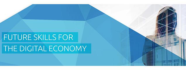 Vaardigheden voor digitale samenleving en economie